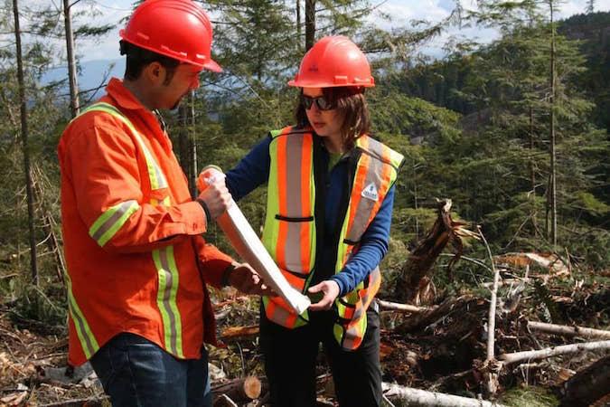 Gestionnaire des mines et des forêts